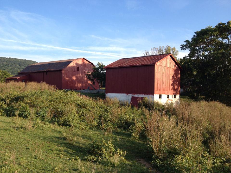 Barns Painted