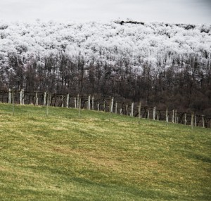 Maggie Malick wine caves and snow